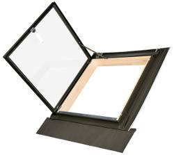 WLI Access Rooflight
