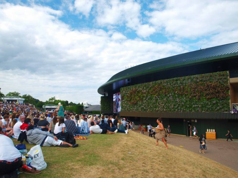 Court No.1, Wimbledon Living Wall
