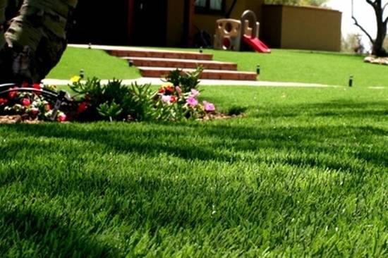 Laydex Victoria Grass
