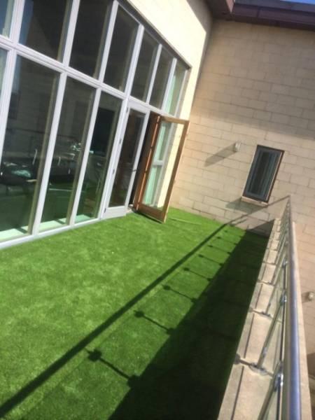 Laydex Breeze Grass