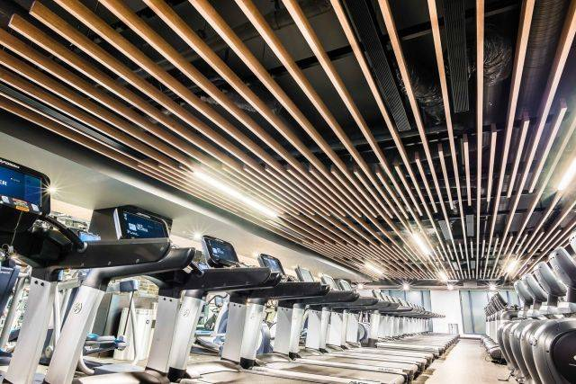 "Longboard® 1.625 x 4"" Beam Ceiling System"