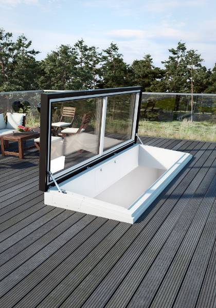 Flat Roof Access Swing