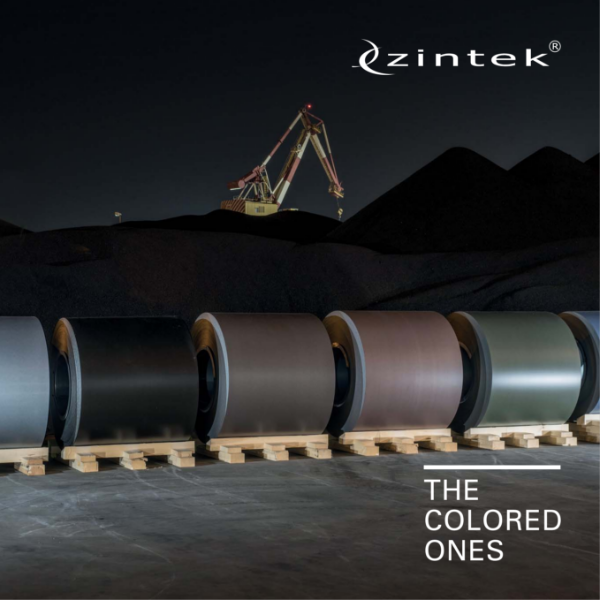 Zintek - The Coloured Ones